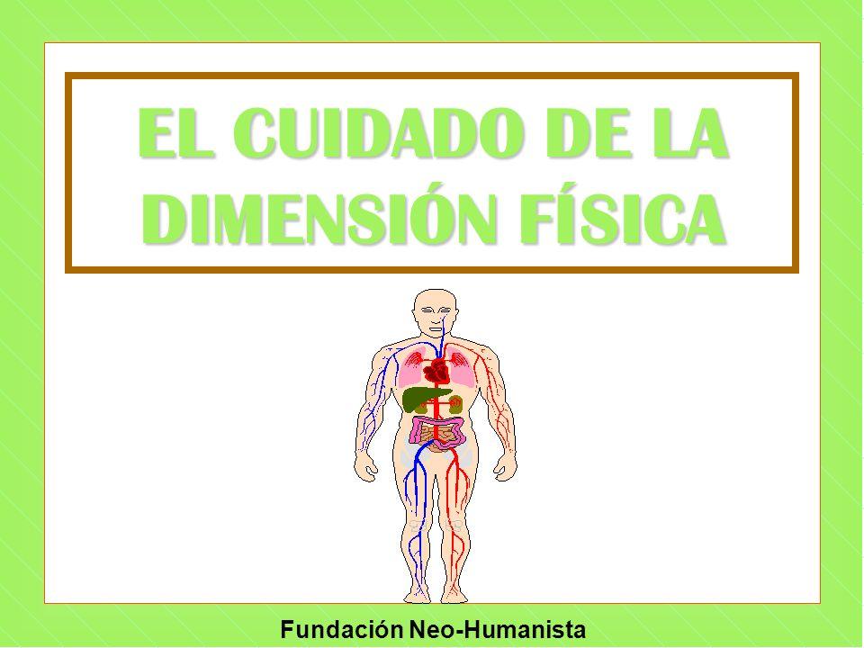 EL CUIDADO DE LA DIMENSIÓN FÍSICA