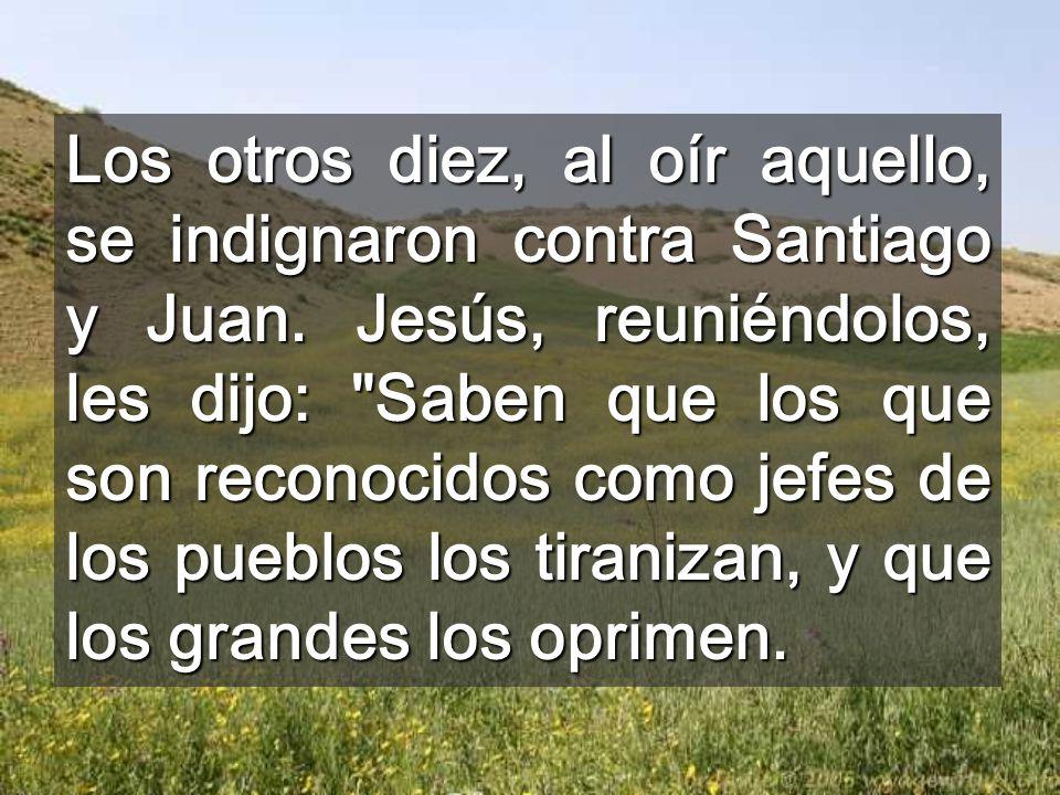 Los otros diez, al oír aquello, se indignaron contra Santiago y Juan
