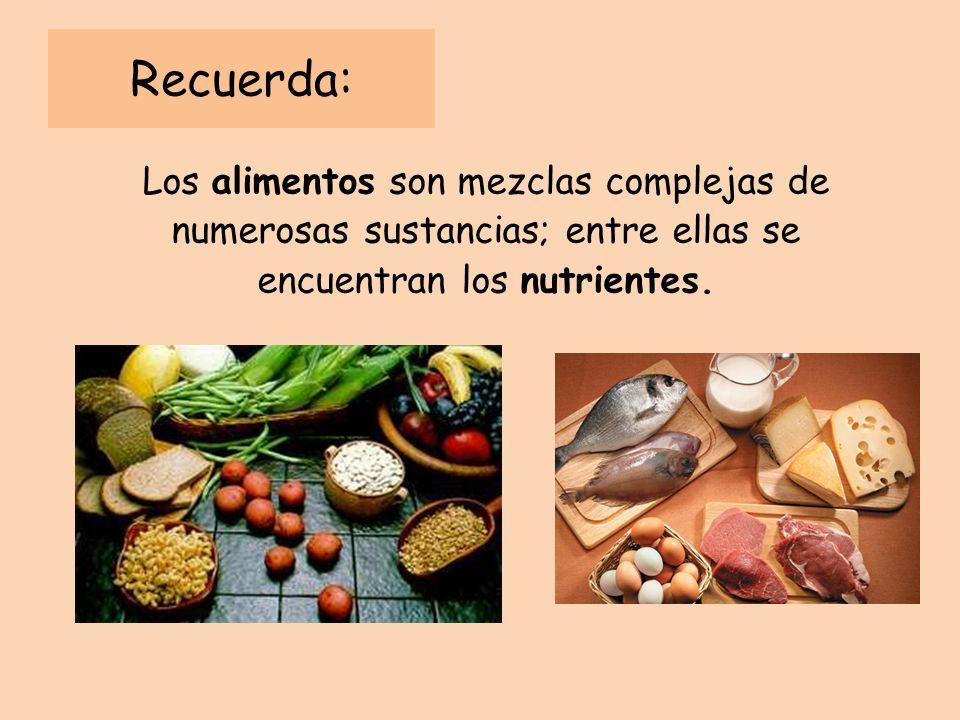Recuerda: Los alimentos son mezclas complejas de numerosas sustancias; entre ellas se encuentran los nutrientes.