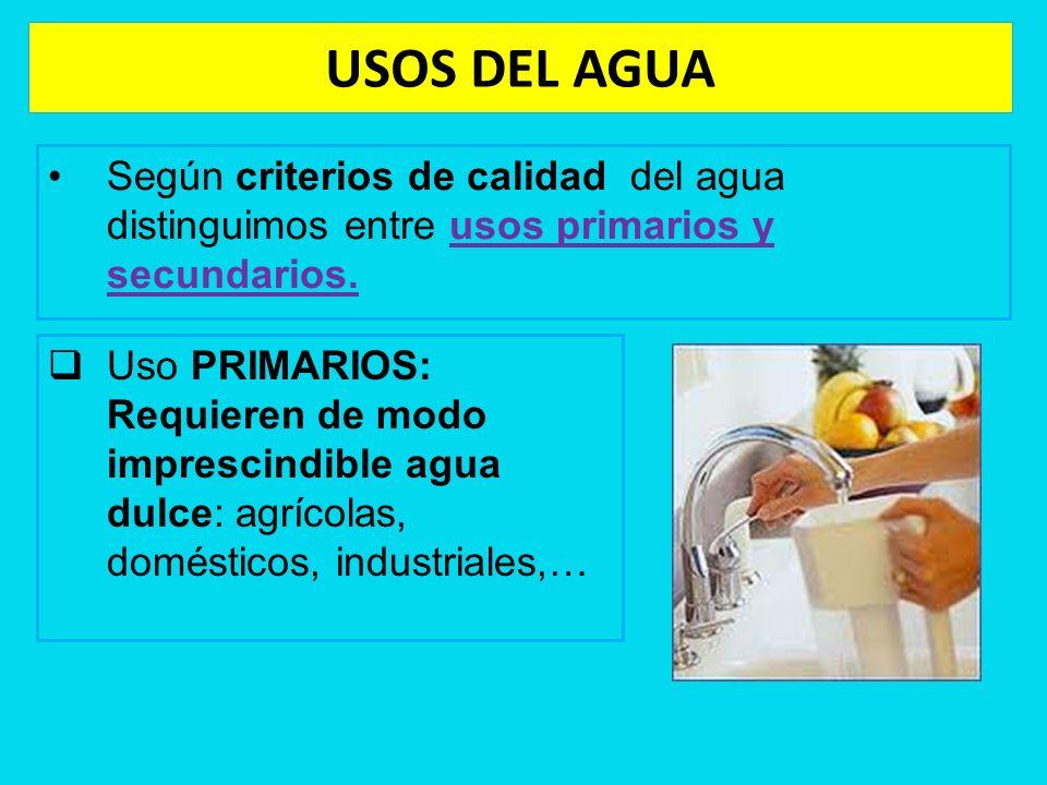 USOS DEL AGUA Según criterios de calidad del agua distinguimos entre usos primarios y secundarios.