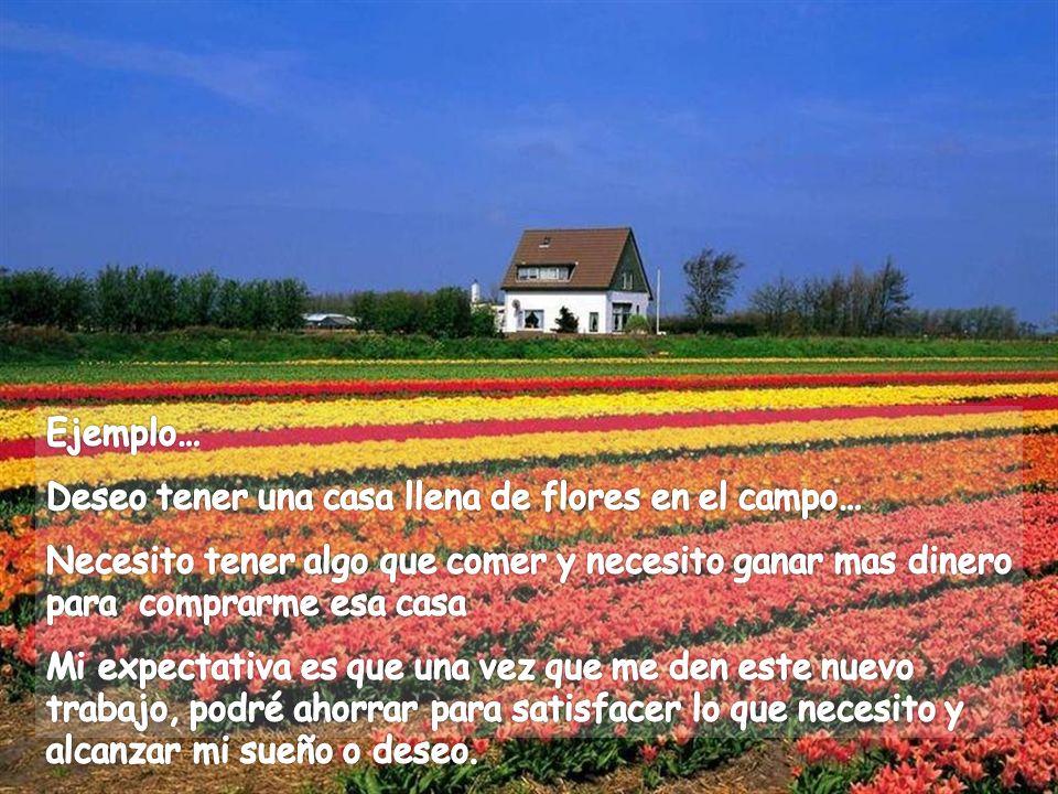 Ejemplo… Deseo tener una casa llena de flores en el campo… Necesito tener algo que comer y necesito ganar mas dinero para comprarme esa casa.