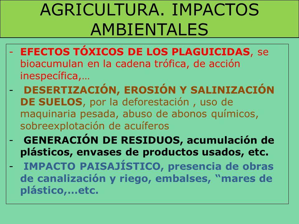 AGRICULTURA. IMPACTOS AMBIENTALES