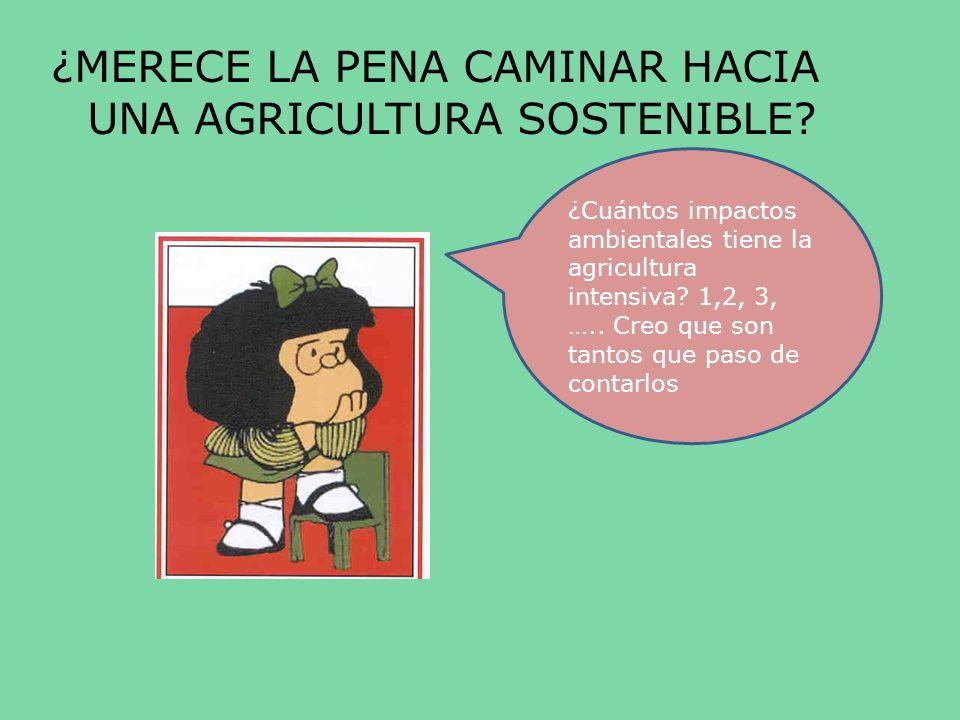 ¿MERECE LA PENA CAMINAR HACIA UNA AGRICULTURA SOSTENIBLE