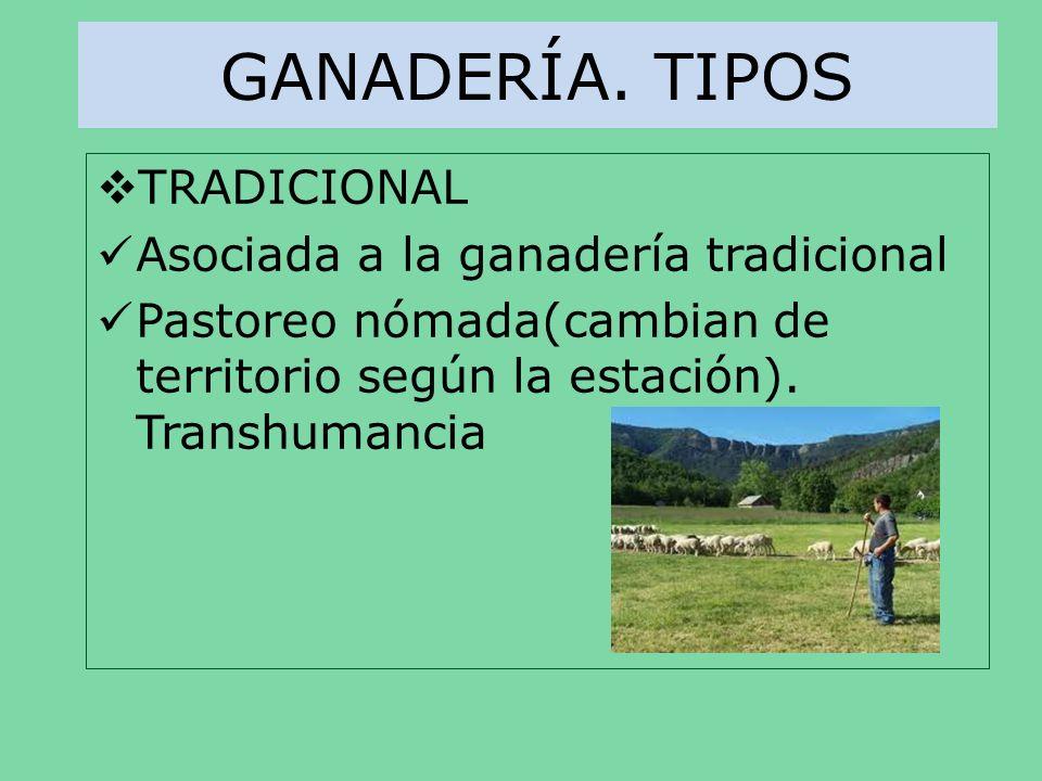GANADERÍA. TIPOS TRADICIONAL Asociada a la ganadería tradicional