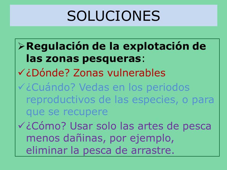 SOLUCIONES Regulación de la explotación de las zonas pesqueras: