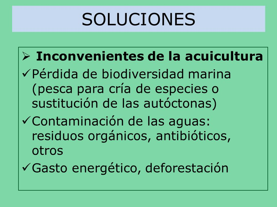 SOLUCIONES Inconvenientes de la acuicultura