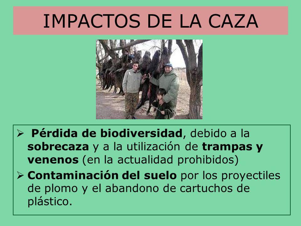 IMPACTOS DE LA CAZAPérdida de biodiversidad, debido a la sobrecaza y a la utilización de trampas y venenos (en la actualidad prohibidos)