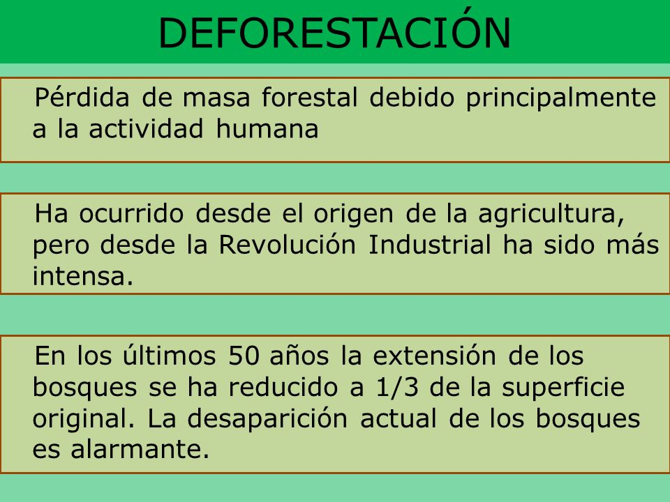 DEFORESTACIÓN Pérdida de masa forestal debido principalmente a la actividad humana.