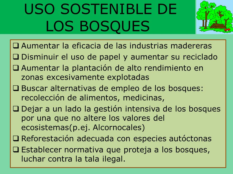 USO SOSTENIBLE DE LOS BOSQUES