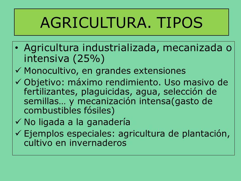 AGRICULTURA. TIPOS Agricultura industrializada, mecanizada o intensiva (25%) Monocultivo, en grandes extensiones.