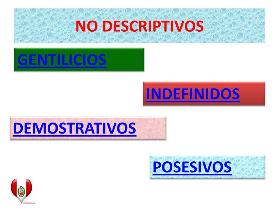 NO DESCRIPTIVOS GENTILICIOS INDEFINIDOS DEMOSTRATIVOS POSESIVOS