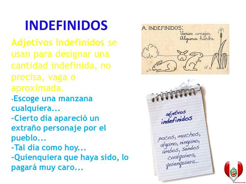 INDEFINIDOS Adjetivos Indefinidos se usan para designar una cantidad indefinida, no precisa, vaga o aproximada.