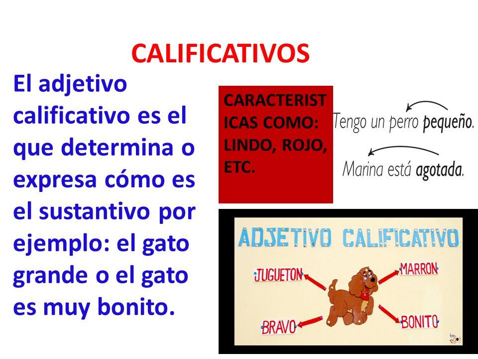 CALIFICATIVOS El adjetivo calificativo es el que determina o expresa cómo es el sustantivo por ejemplo: el gato grande o el gato es muy bonito.