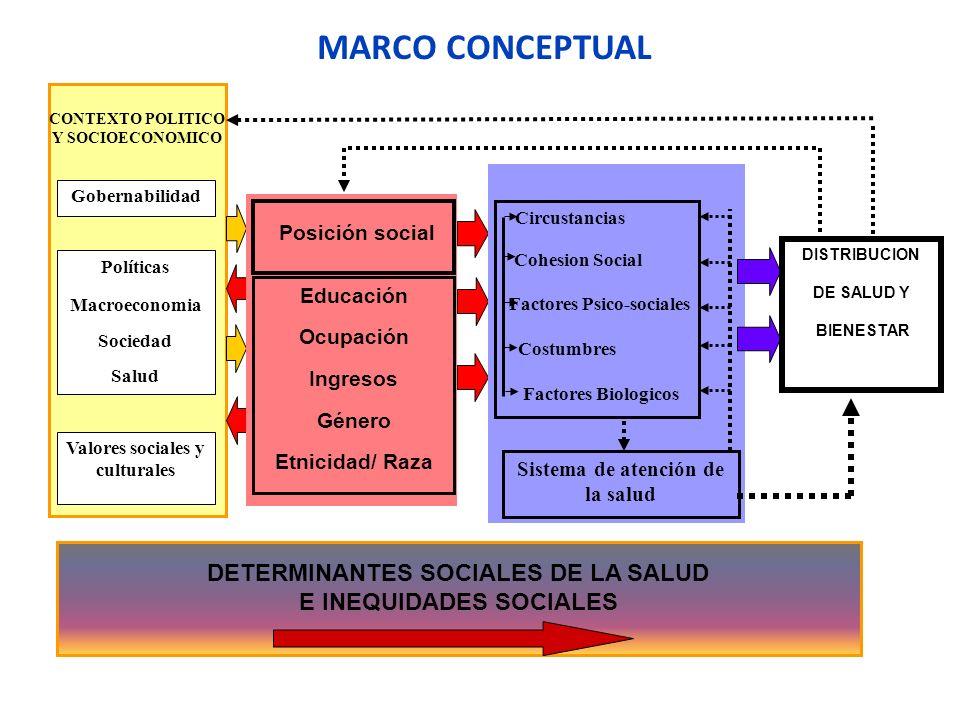 MARCO CONCEPTUAL DETERMINANTES SOCIALES DE LA SALUD