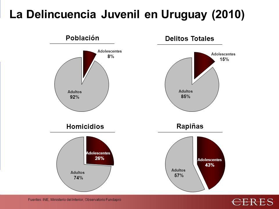 La Delincuencia Juvenil en Uruguay (2010)