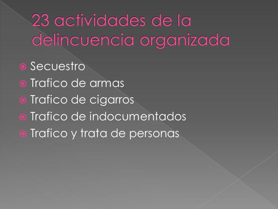 23 actividades de la delincuencia organizada