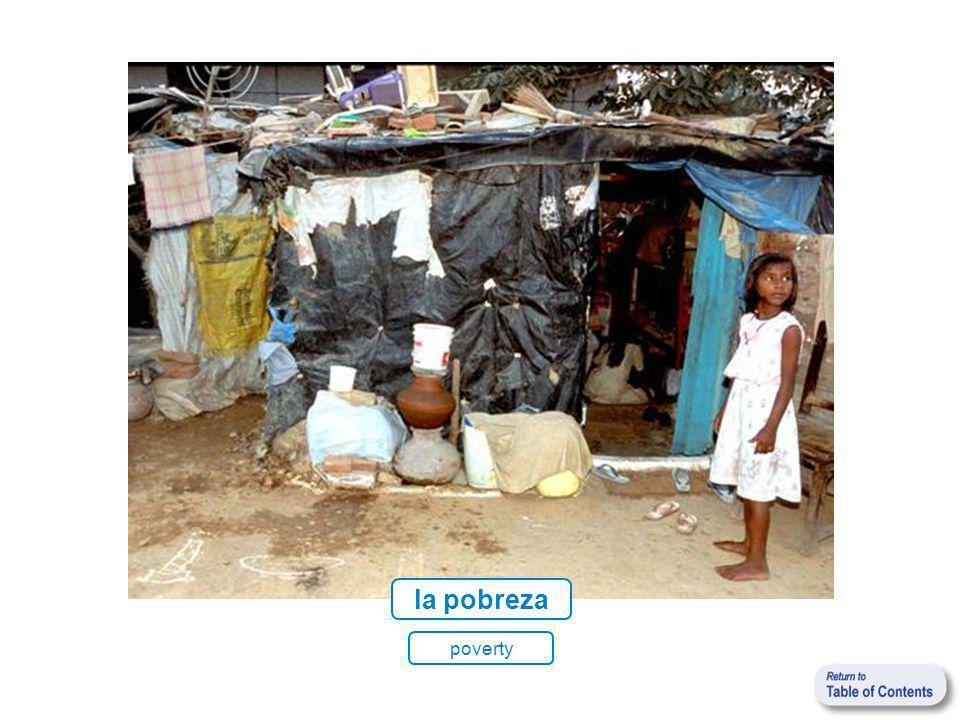 la pobreza poverty