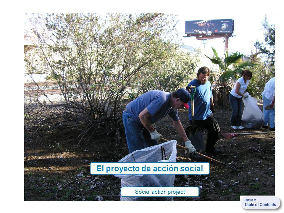 El proyecto de acción social