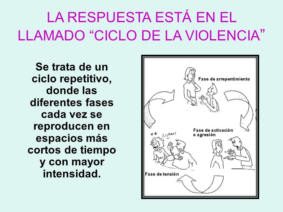 LA RESPUESTA ESTÁ EN EL LLAMADO CICLO DE LA VIOLENCIA