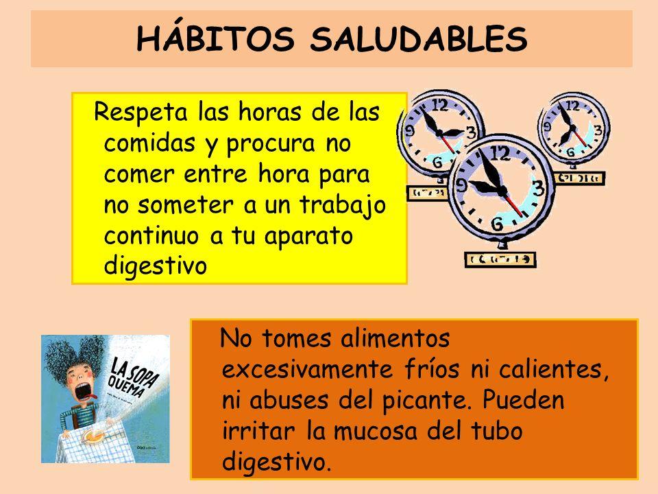 HÁBITOS SALUDABLES Respeta las horas de las comidas y procura no comer entre hora para no someter a un trabajo continuo a tu aparato digestivo.