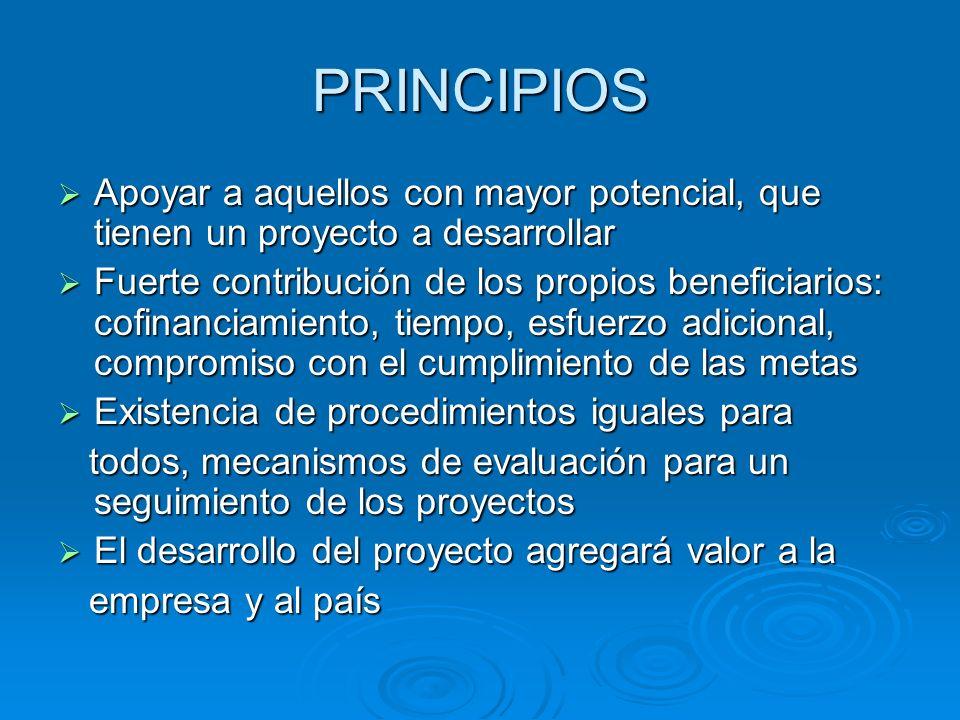 PRINCIPIOS Apoyar a aquellos con mayor potencial, que tienen un proyecto a desarrollar.