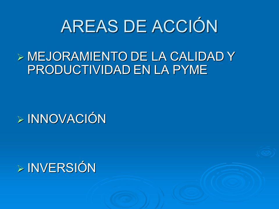 AREAS DE ACCIÓN MEJORAMIENTO DE LA CALIDAD Y PRODUCTIVIDAD EN LA PYME