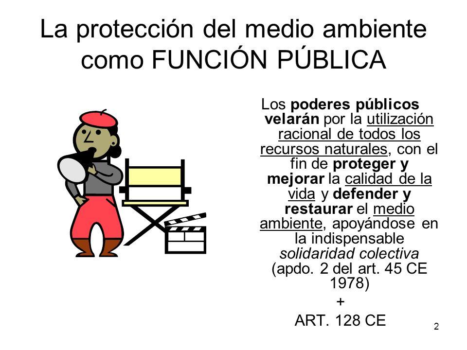 La protección del medio ambiente como FUNCIÓN PÚBLICA