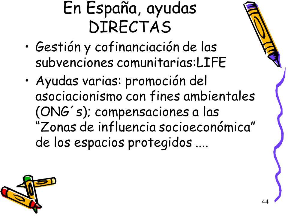 En España, ayudas DIRECTAS