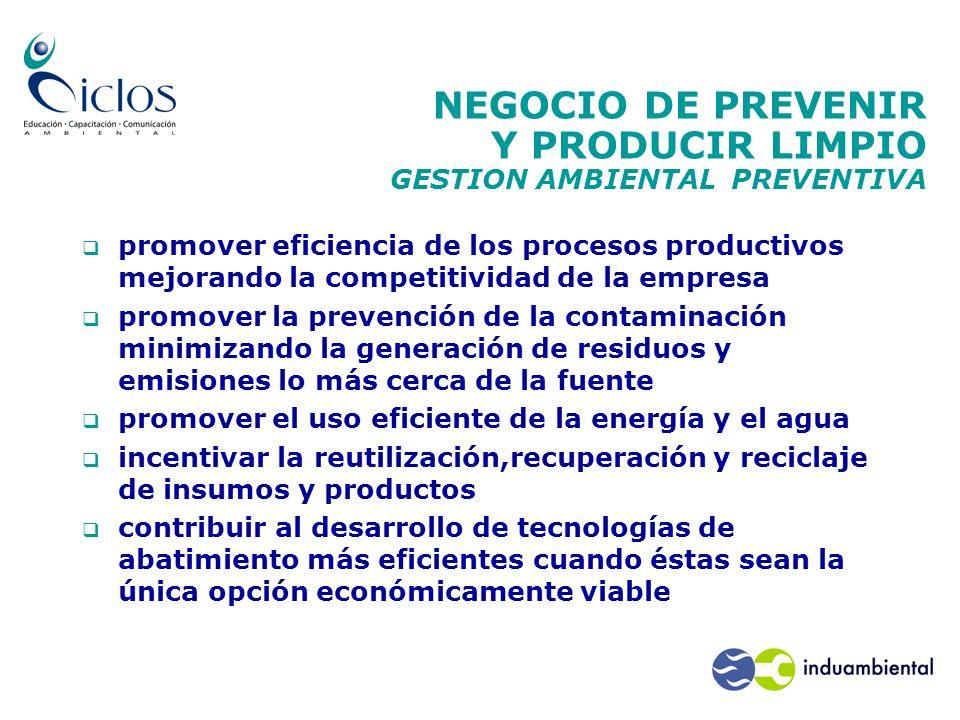 NEGOCIO DE PREVENIR Y PRODUCIR LIMPIO GESTION AMBIENTAL PREVENTIVA