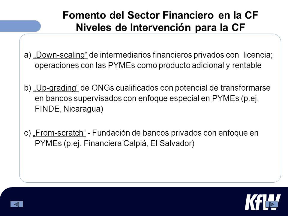 Fomento del Sector Financiero en la CF Niveles de Intervención para la CF