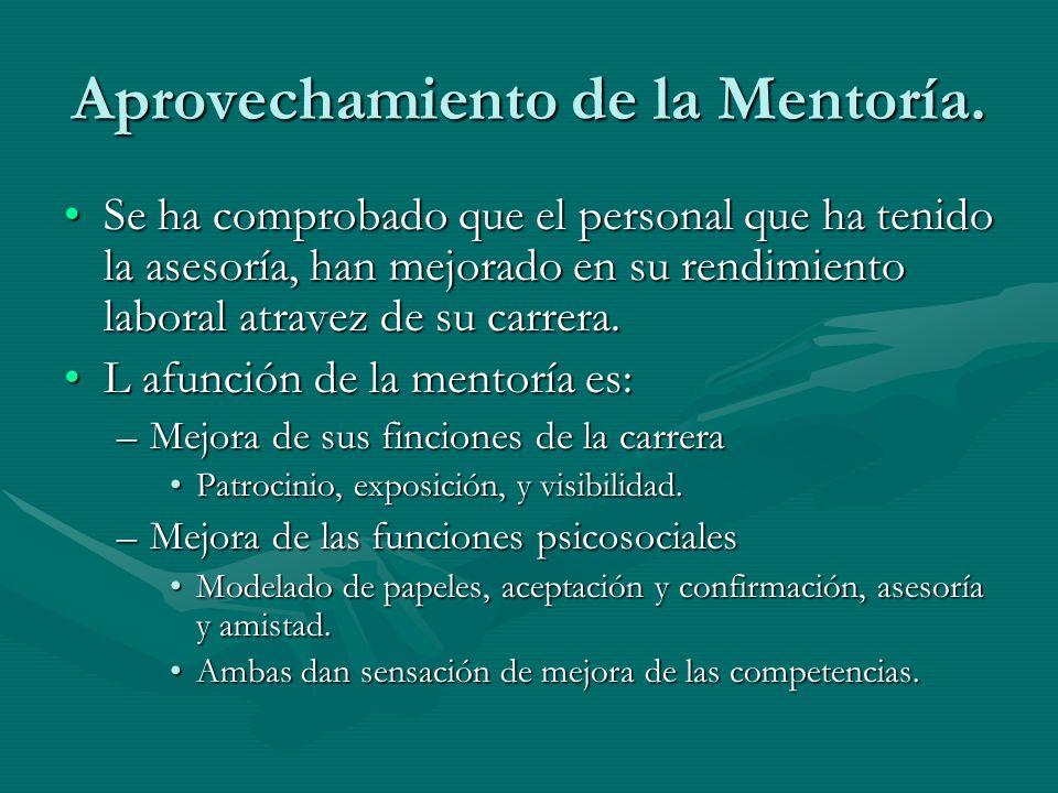Aprovechamiento de la Mentoría.