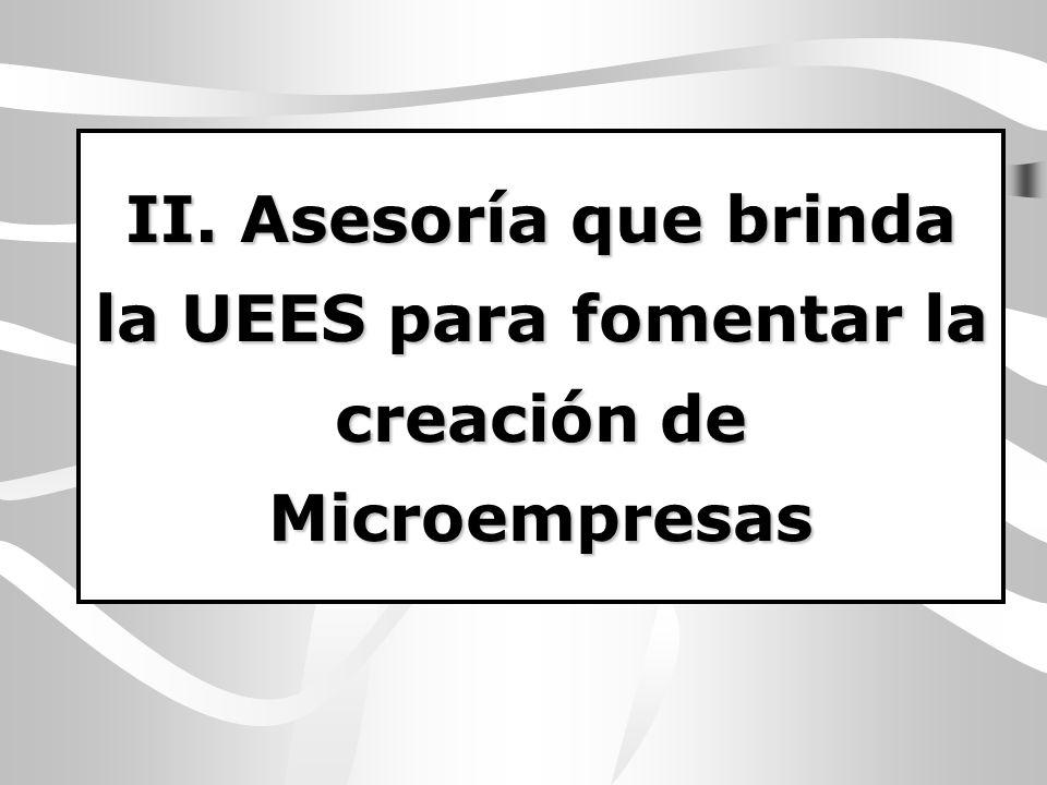 II. Asesoría que brinda la UEES para fomentar la creación de Microempresas