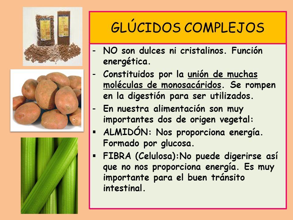GLÚCIDOS COMPLEJOS NO son dulces ni cristalinos. Función energética.