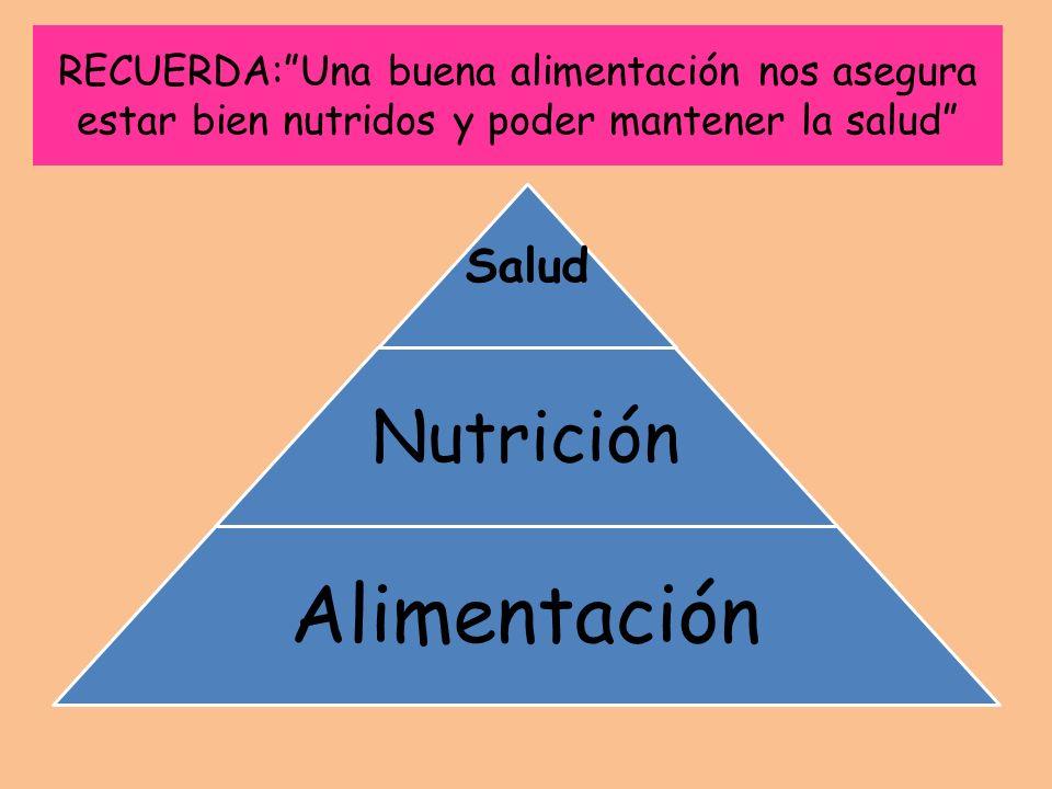 Alimentación Nutrición Salud