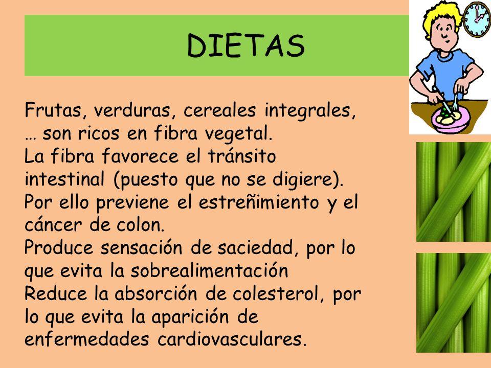 DIETAS Frutas, verduras, cereales integrales, … son ricos en fibra vegetal. La fibra favorece el tránsito intestinal (puesto que no se digiere).