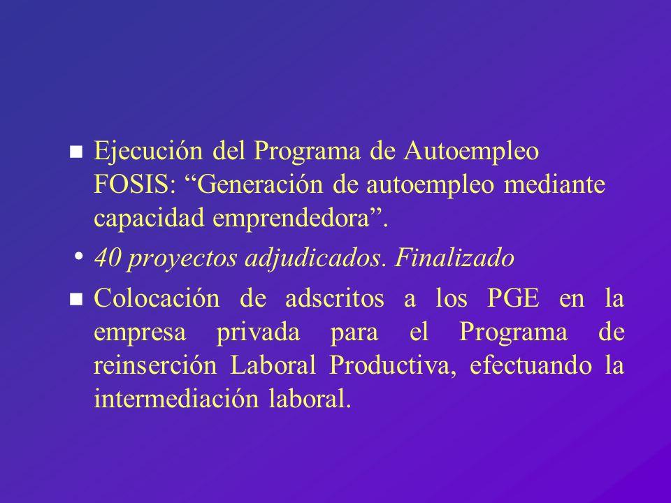 Ejecución del Programa de Autoempleo FOSIS: Generación de autoempleo mediante capacidad emprendedora .