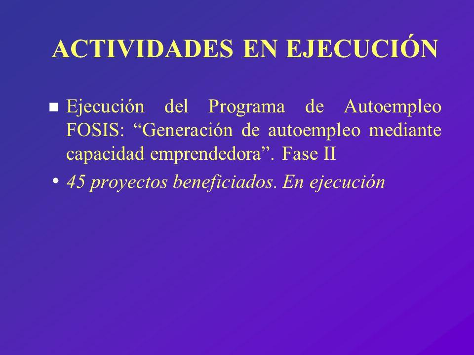 ACTIVIDADES EN EJECUCIÓN