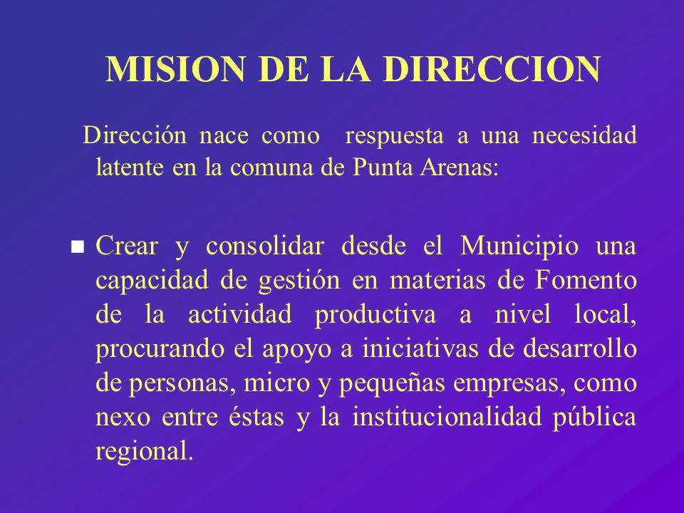 MISION DE LA DIRECCION Dirección nace como respuesta a una necesidad latente en la comuna de Punta Arenas: