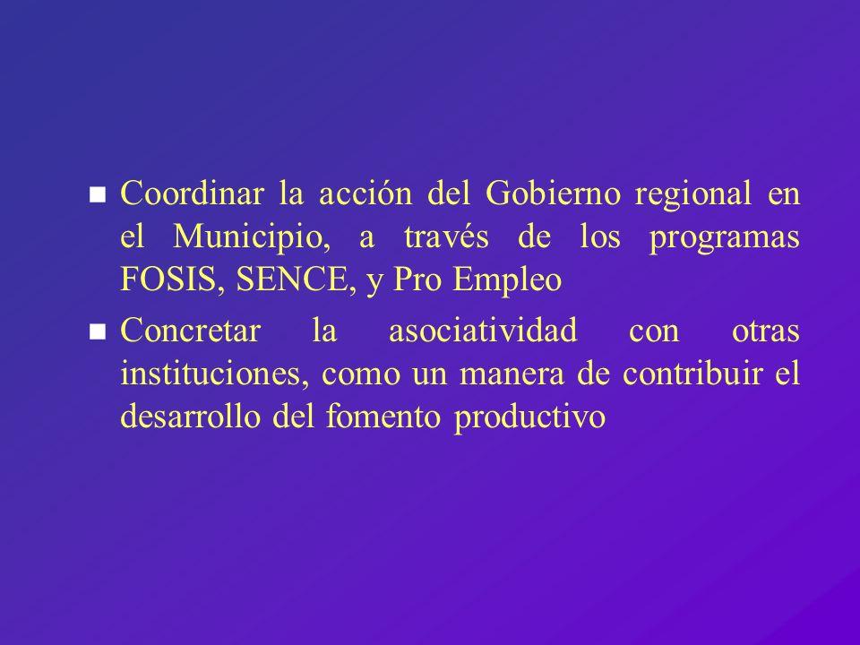 Coordinar la acción del Gobierno regional en el Municipio, a través de los programas FOSIS, SENCE, y Pro Empleo