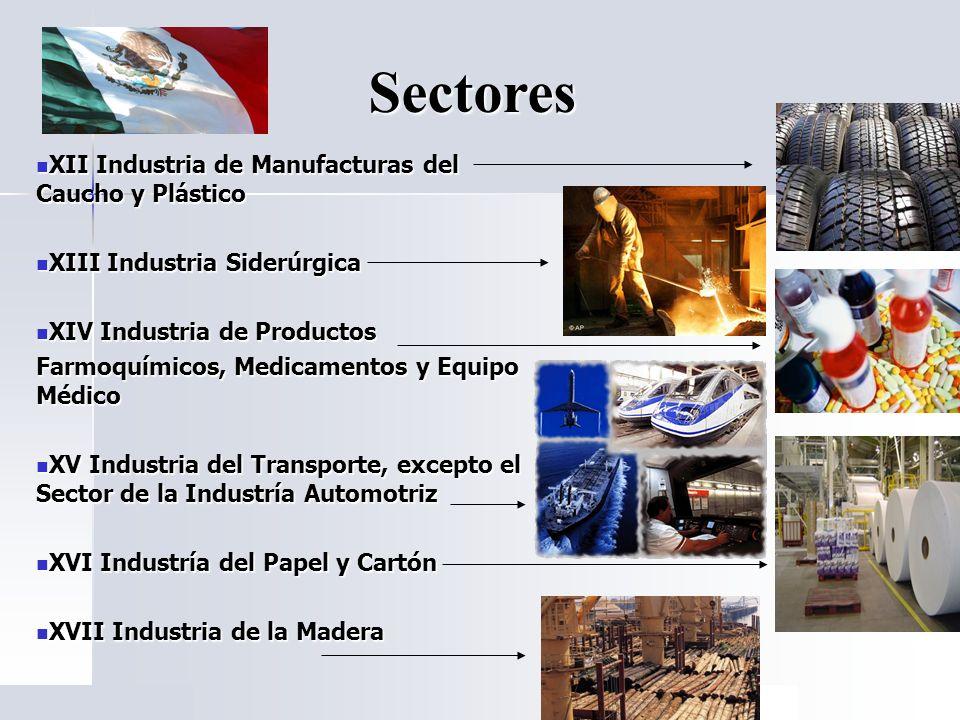 Sectores XII Industria de Manufacturas del Caucho y Plástico