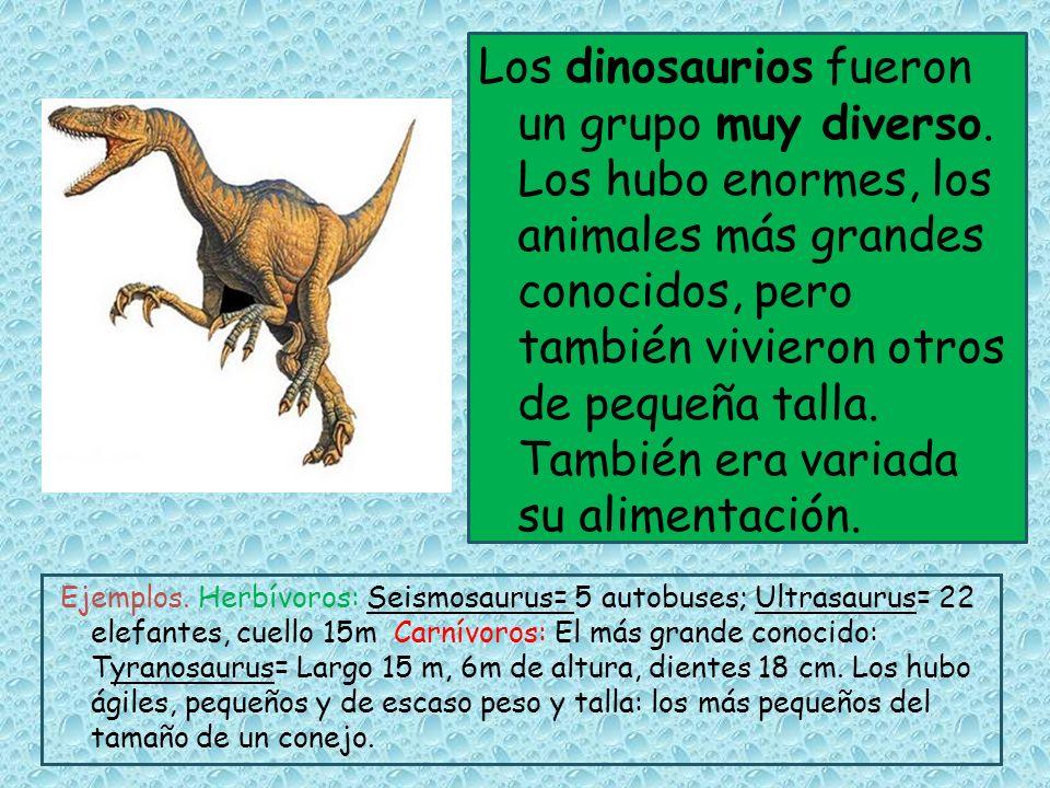 Los dinosaurios fueron un grupo muy diverso