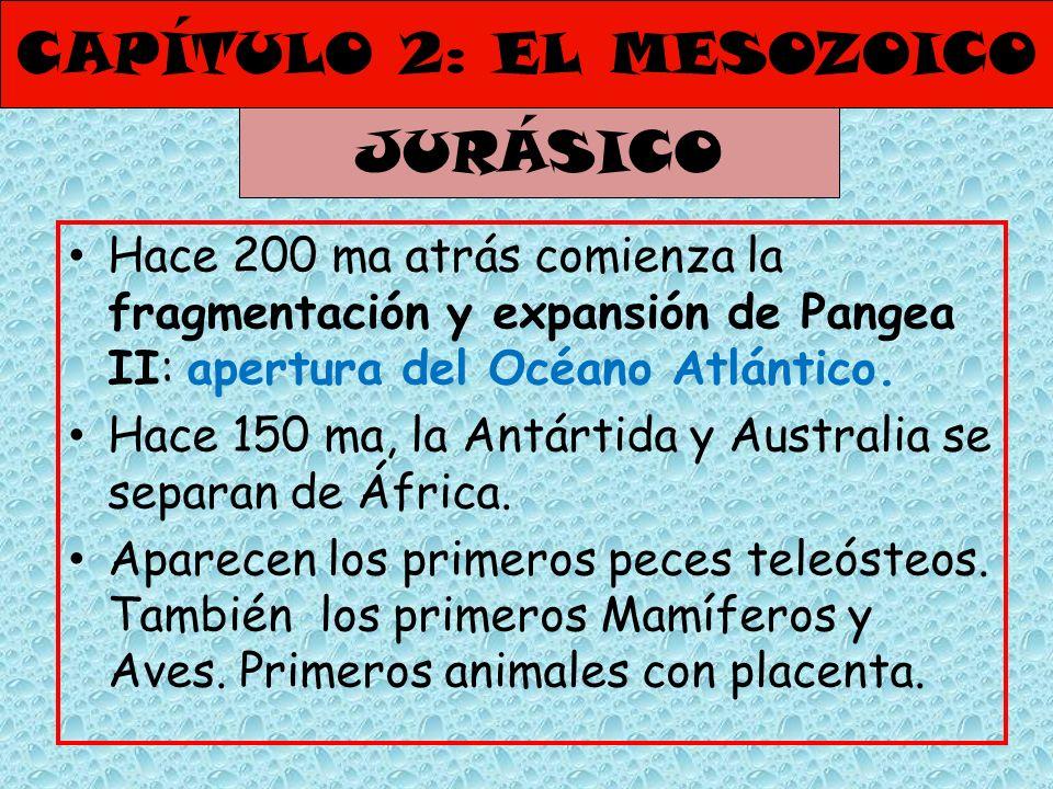 CAPÍTULO 2: EL MESOZOICO