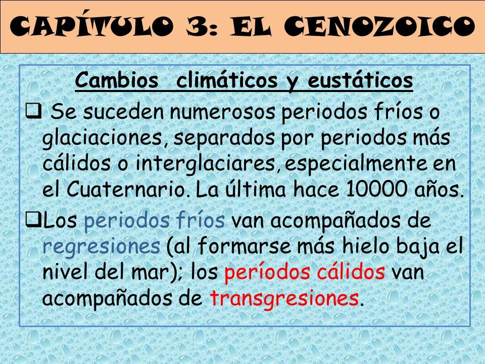 CAPÍTULO 3: EL CENOZOICO