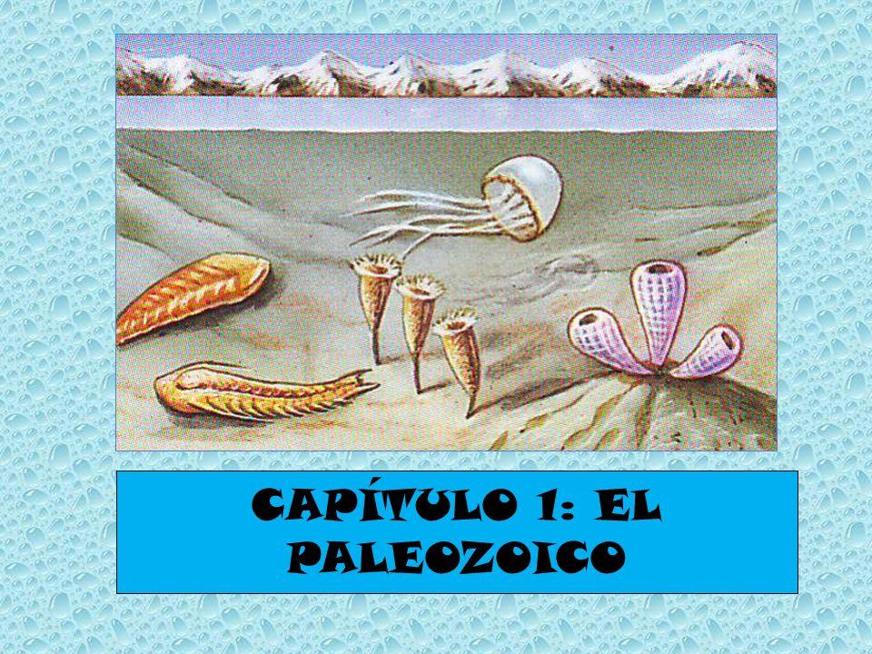 CAPÍTULO 1: EL PALEOZOICO