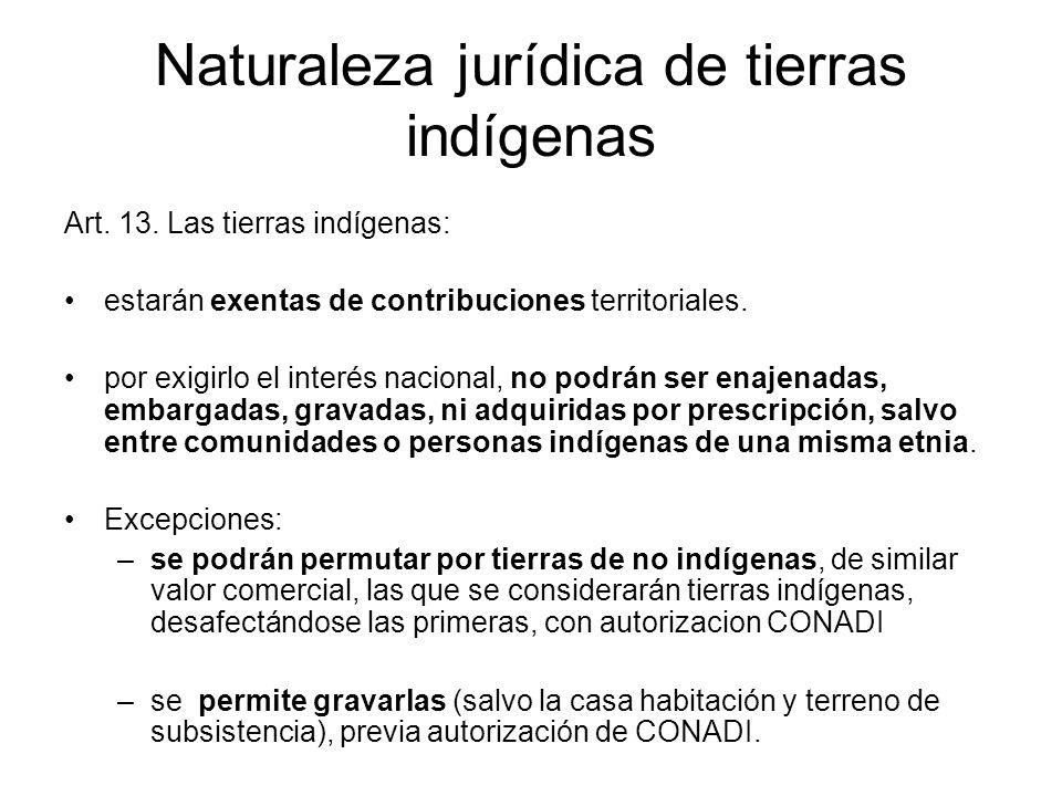 Naturaleza jurídica de tierras indígenas