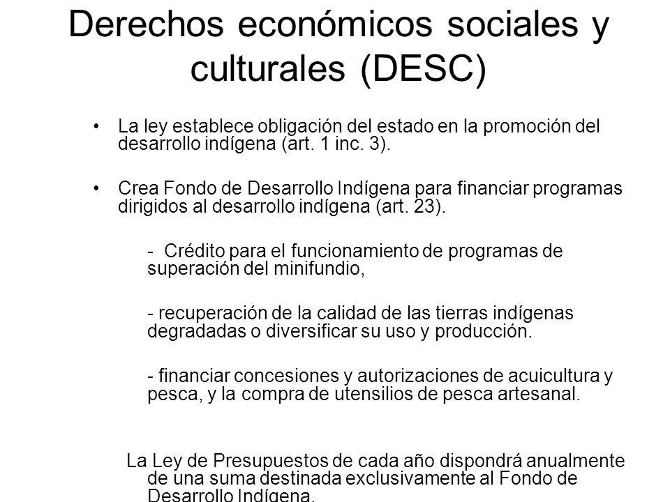 Derechos económicos sociales y culturales (DESC)