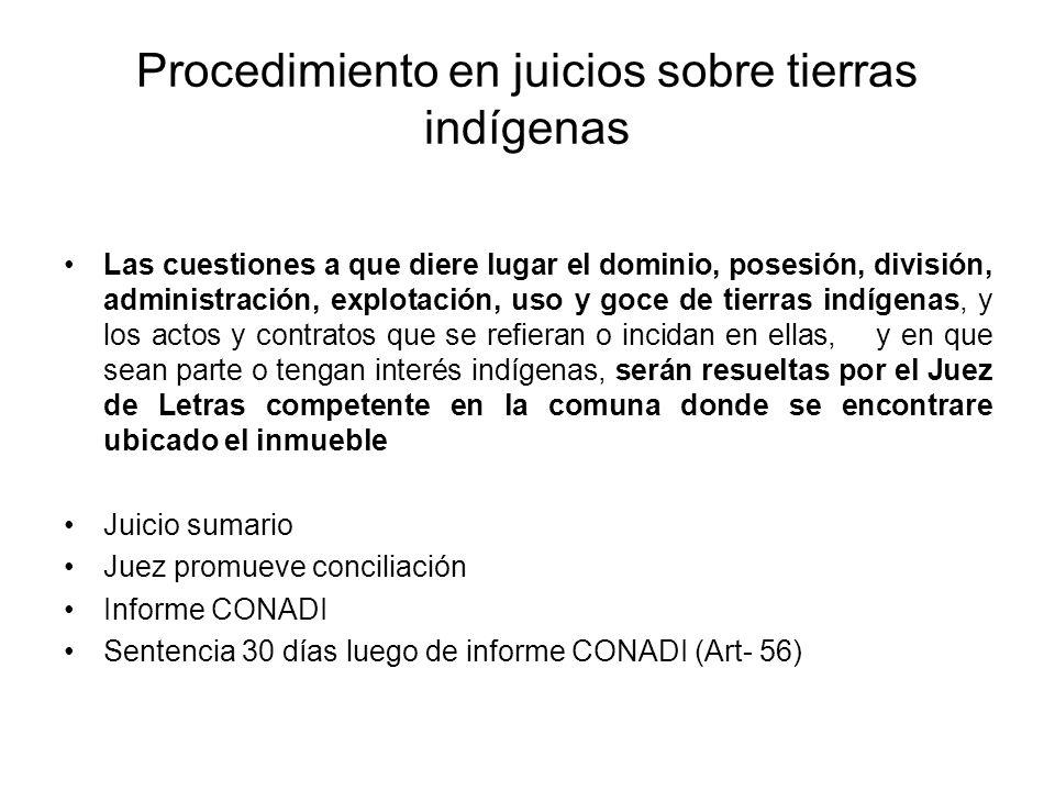 Procedimiento en juicios sobre tierras indígenas