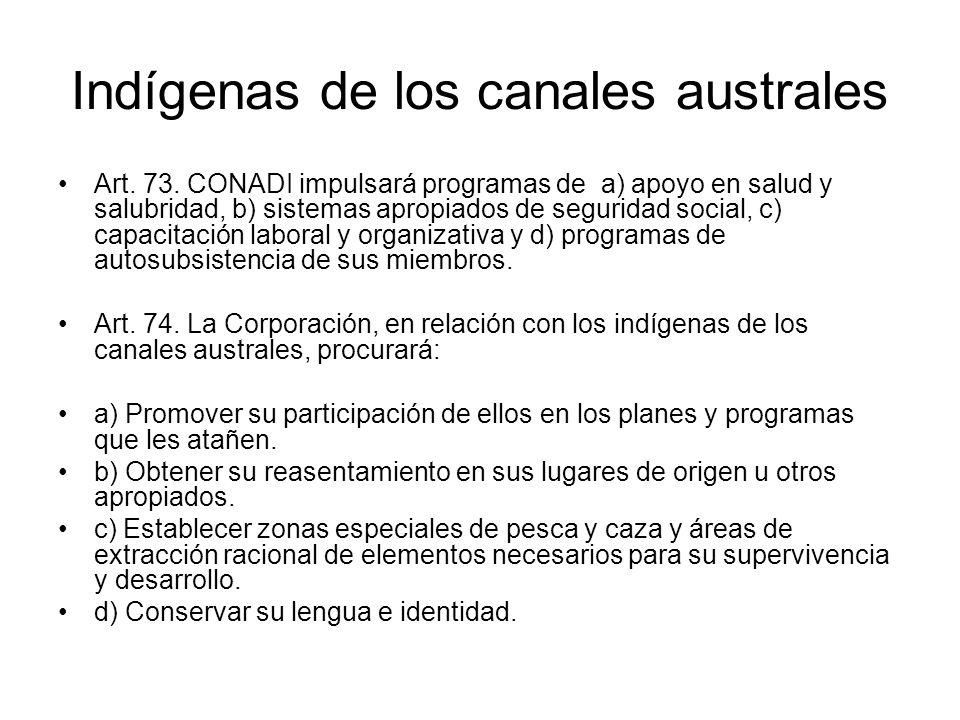 Indígenas de los canales australes