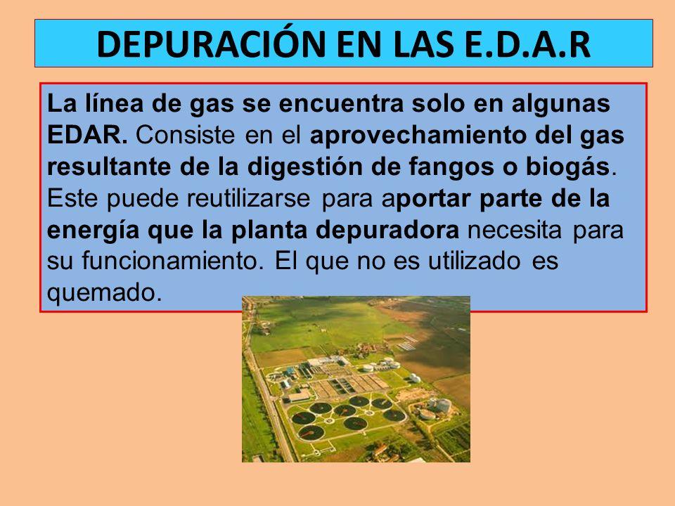DEPURACIÓN EN LAS E.D.A.R