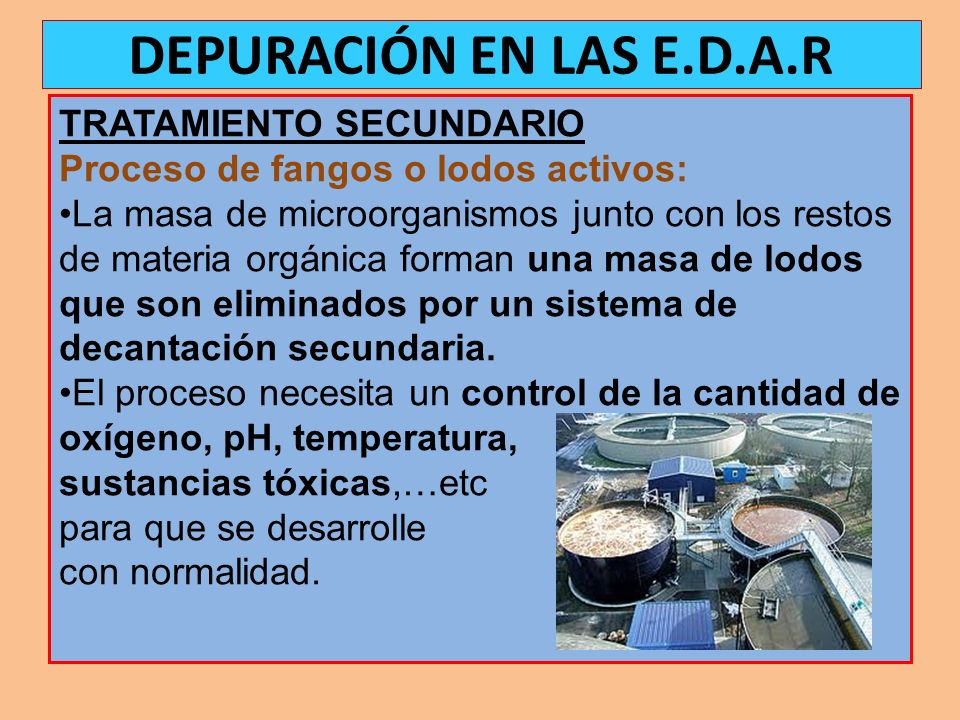 DEPURACIÓN EN LAS E.D.A.R TRATAMIENTO SECUNDARIO
